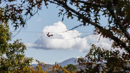 Take advantage of all that the Smoky Mountains has to offer by ziplining through the mountain range.
