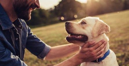 A man pets his dog.
